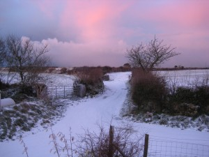 Pembrokeshire in winter